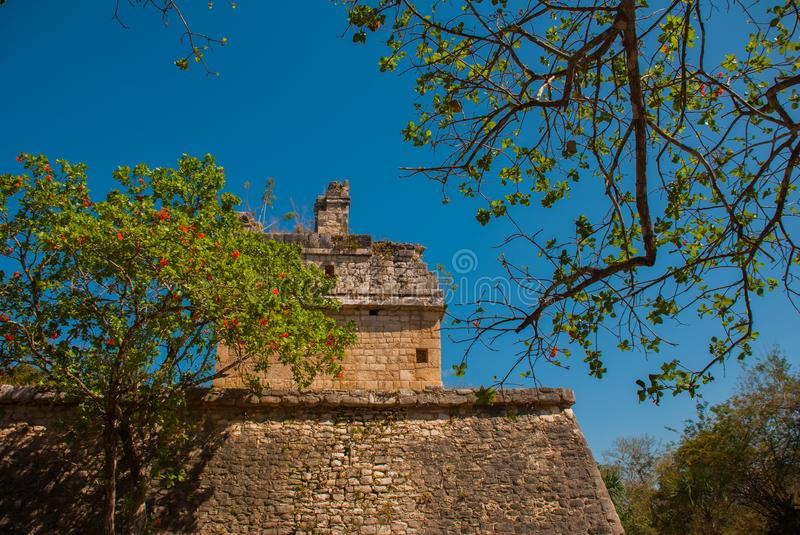 Ancient Mayan city. Destroyed buildings and pyramids in the forest. Chichen-Itza, Mexico. Yucatan. Ancient Mayan city. Destroyed buildings and pyramids in the stock photo