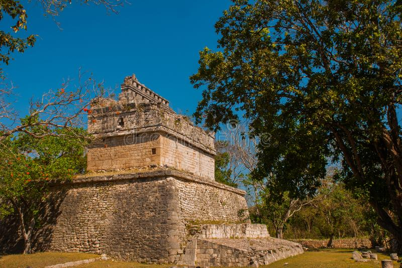 Ancient Mayan city. Destroyed buildings and pyramids in the forest. Chichen-Itza, Mexico. Yucatan. Ancient Mayan city. Destroyed buildings and pyramids in the stock photography