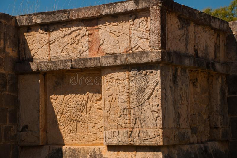 Ancient Mayan drawings on stone. The texture of the stone. Chichen-Itza, Mexico.  stock image