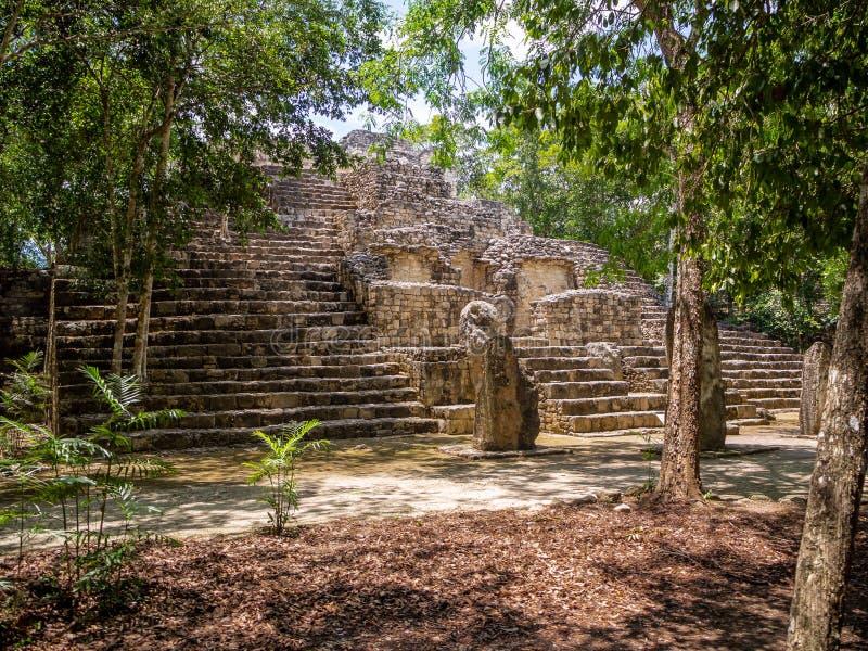 Ancient Mayan ruins in the jungle of Calakmul, Mexico royalty free stock photo
