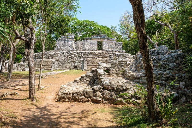 Ancient mayan ruins at the jungle in Mexico royalty free stock images