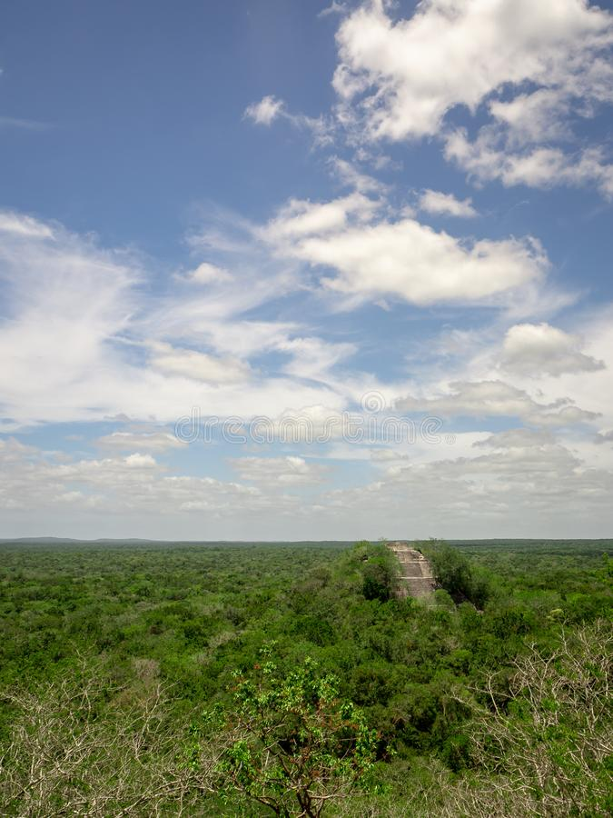 Ancient Mayan stone structure rising out of the jungle canopy at. Calakmul, Mexico with clouds royalty free stock photo