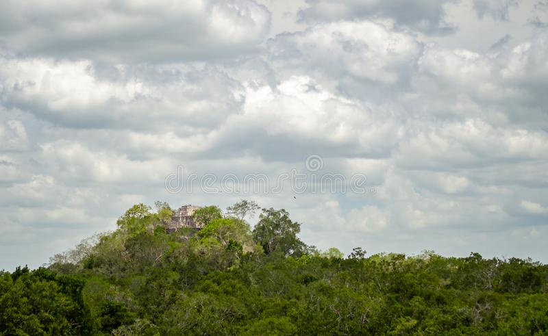 Ancient Mayan stone structure rising out of the jungle canopy at. Calakmul, Mexico royalty free stock photo