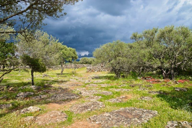 Ancient megalithic Serra Orrios Nuragic Village in Sardinia, Italy royalty free stock photos