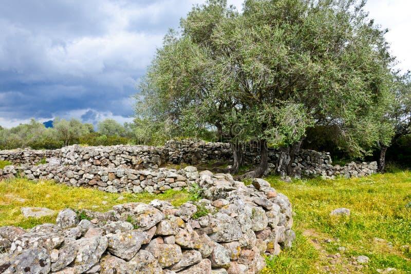 Ancient megalithic Serra Orrios Nuragic Village in Sardinia, Italy stock photography