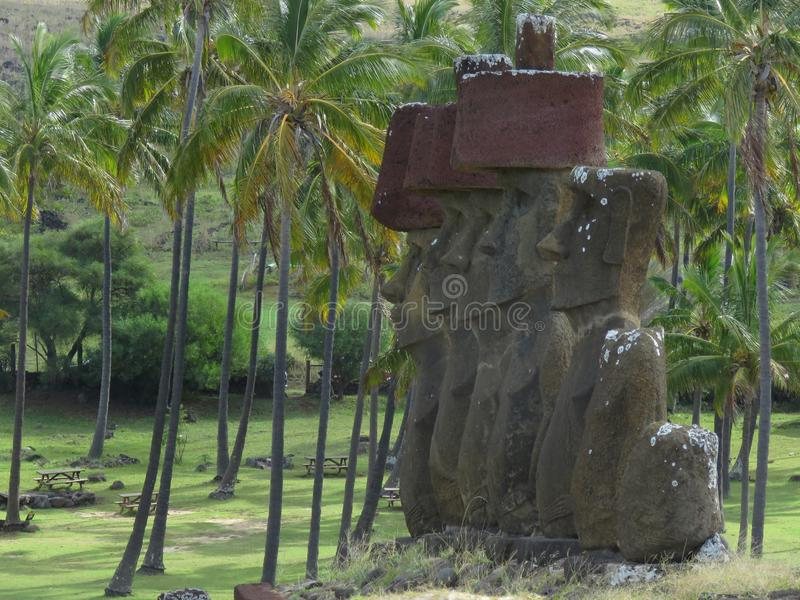 Ancient Moai statues on Easter Island surrounded by palmtrees. royalty free stock photos