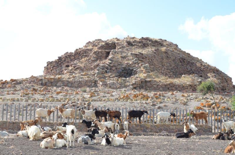 The ancient Nuraghe of Seruci, Sardinia stock photography