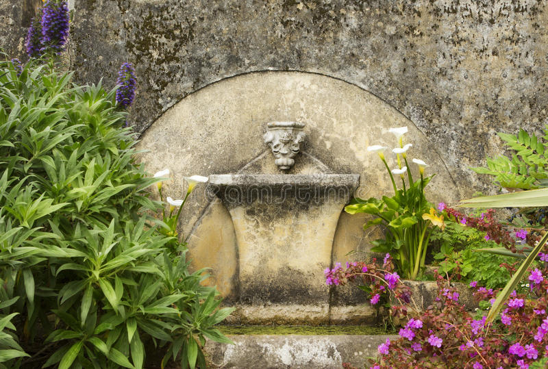 Ancient old fountain with flowers around. Source of water calla lily lilac royalty free stock photo