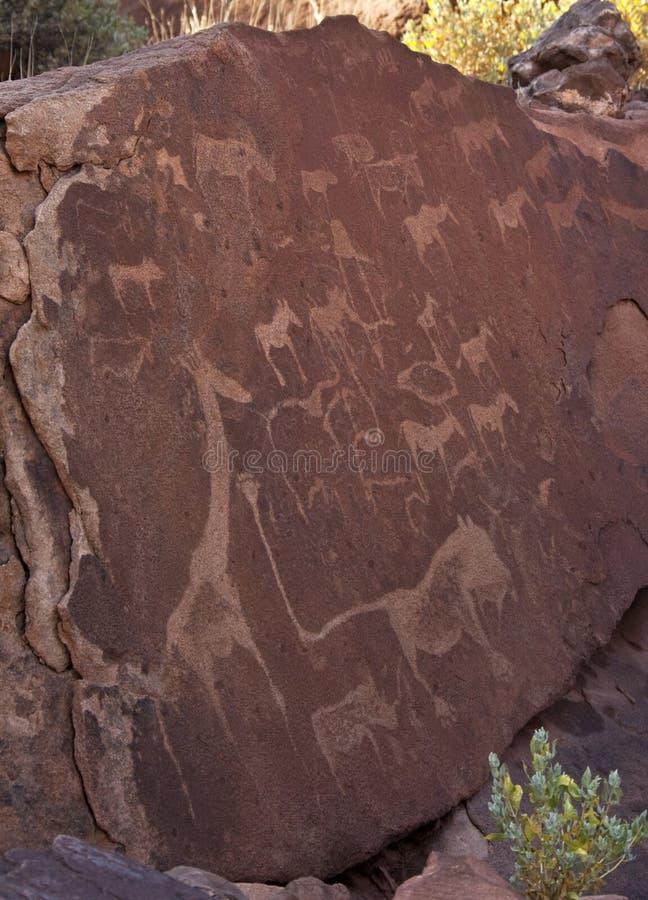 Ancient petroglyphs - Namibia royalty free stock image