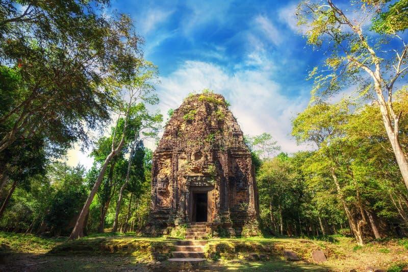 Ancient pre Angkor Sambor Prei Kuk temple ruins. Cambodia. Ancient Khmer pre Angkor architecture. Sambor Prei Kuk temple ruins with giant banyan trees under blue stock photography