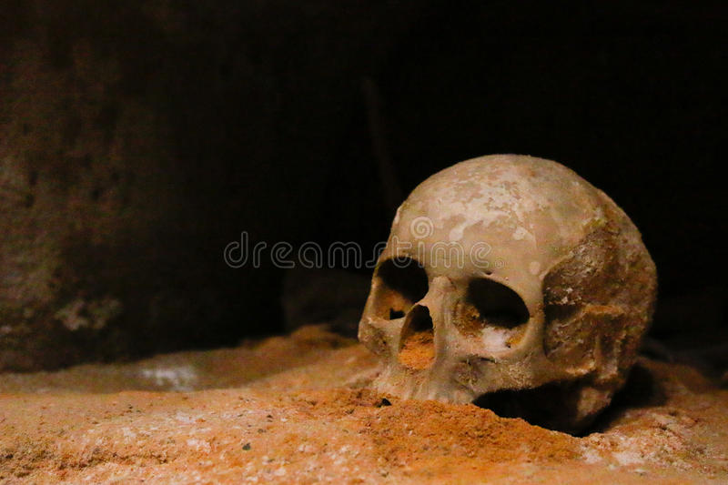 Ancient remains. Human remains in the crypt of a long-gone church, beneath the old city wall in Cartagena, Spain royalty free stock image