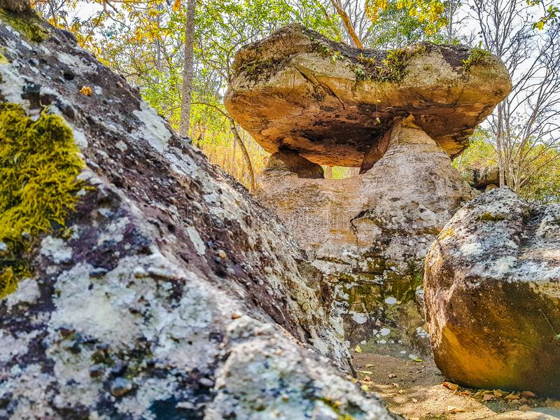 The ancient rock naturally occurring in a sacred site at Phu Phra bat historic park royalty free stock image