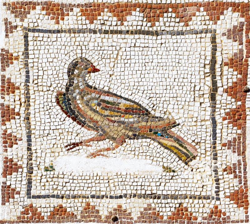 Ancient roman mosaic representing a dove, Sevilla stock photography