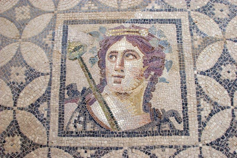 Terrace Houses, Ephesus, Turkey. Ancient Roman Mosaics from Terrace Houses, Ephesus, Turkey stock photography