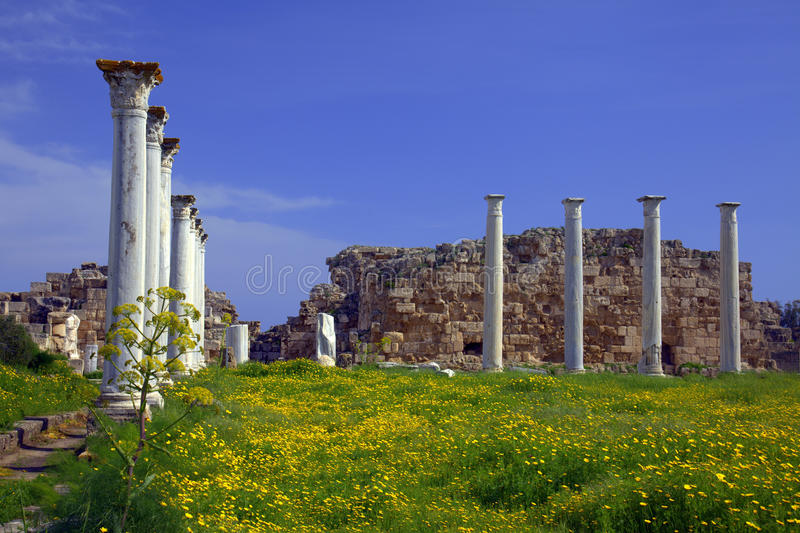Download Ancient Roman Site In Salamis Stock Photo - Image: 13396978