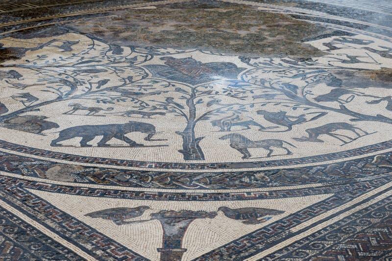 Ancient roman Volubils ruins and mosaics stock image