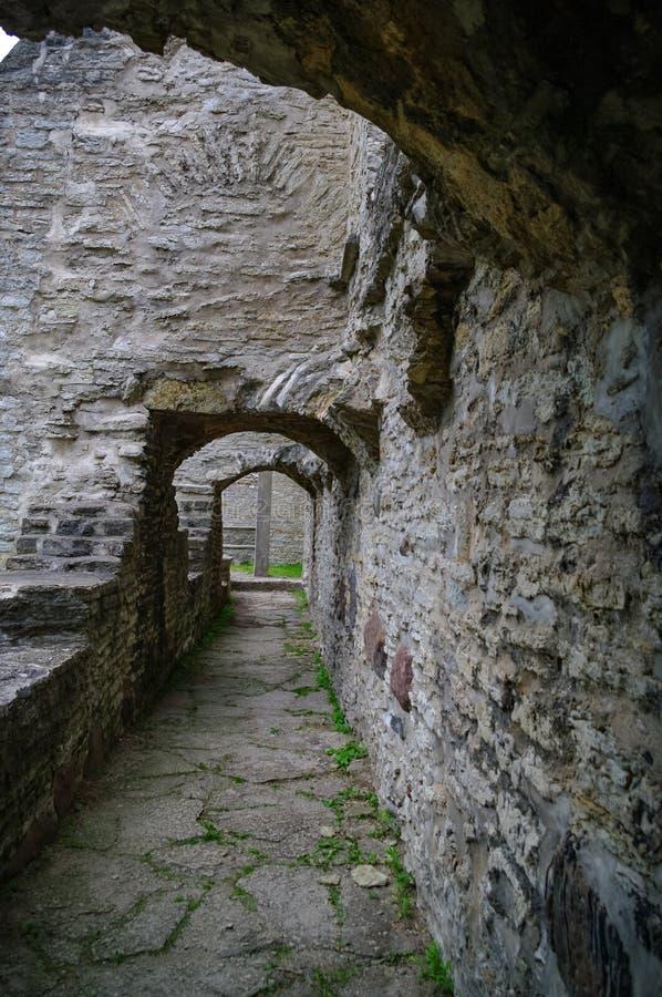 Ancient ruined St. Brigitta convent in Pirita region, Tallinn, Estonia.  royalty free stock image