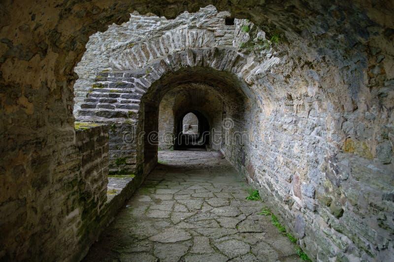 Ancient ruined St. Brigitta convent in Pirita region, Tallinn, Estonia.  royalty free stock photography