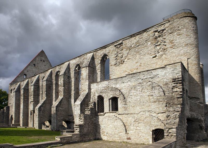 Ancient ruined St. Brigitta convent 1436 year in Pirita region, Tallinn, Estonia.  stock photos