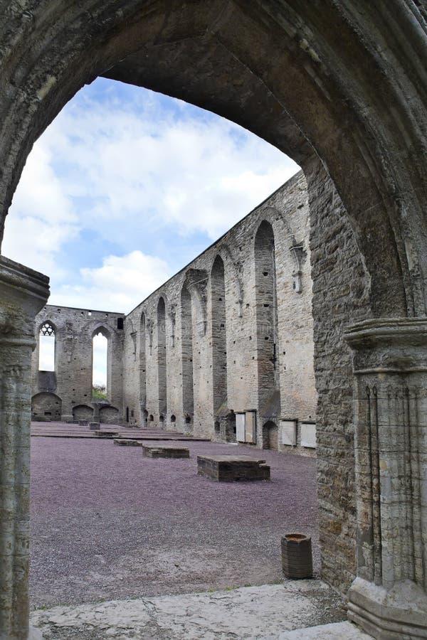 Ancient ruined St. Brigitta convent 1436 year in Pirita region, Tallinn, Estonia.  royalty free stock image