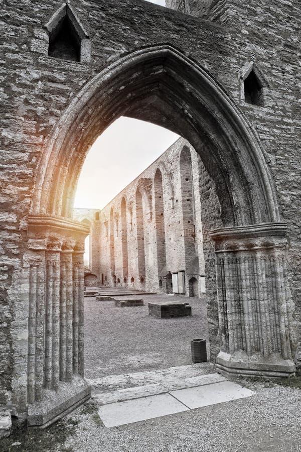 Ancient ruined St. Brigitta convent  1436 year  in Pirita region, Tallinn, Estonia stock photos