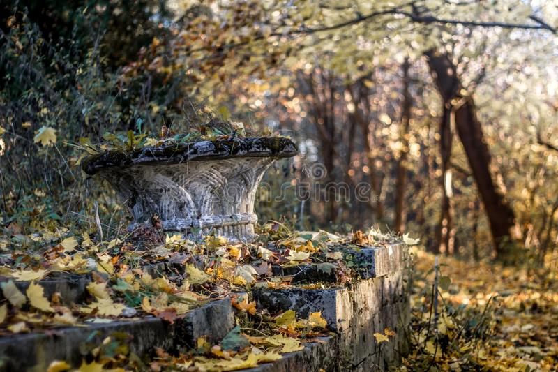 Ancient ruins in autumn foliage. Turquoise and orange. beautiful weather. autumn forest. still life of foliage. leaf litter. dreams and reflections. autumn royalty free stock photos
