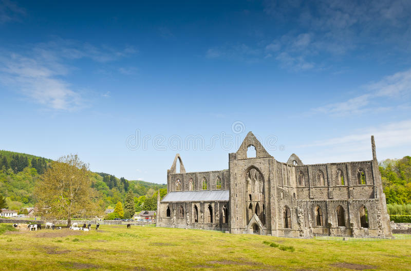 Download Ancient Ruins, Tintern Abbey, Wales, UK Stock Image - Image of arch, abbey: 42116163