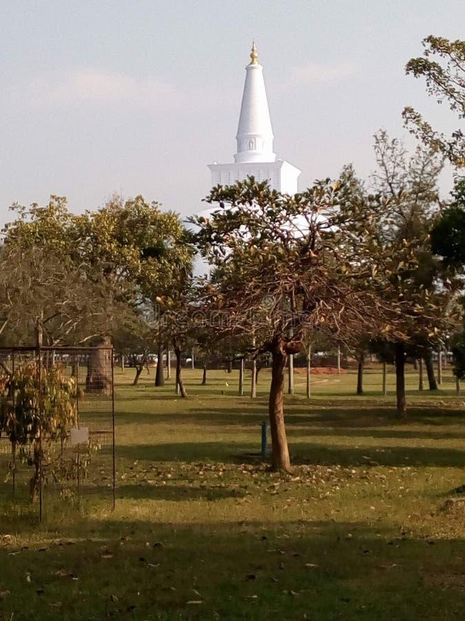 Ancient Ruwanweli Maha Saya Anuradhapura, Sri Lanka royalty free stock photo