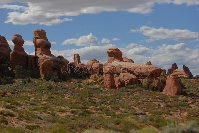 Ancient Sandstone Statues. Arches National Park, clouds puff across landscape of red sandstone remnants of ancient sea beds. Pinyon pine in the foreground royalty free stock images