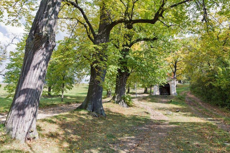 Road to Calvary in Banska Stiavnica, Slovakia. stock photos