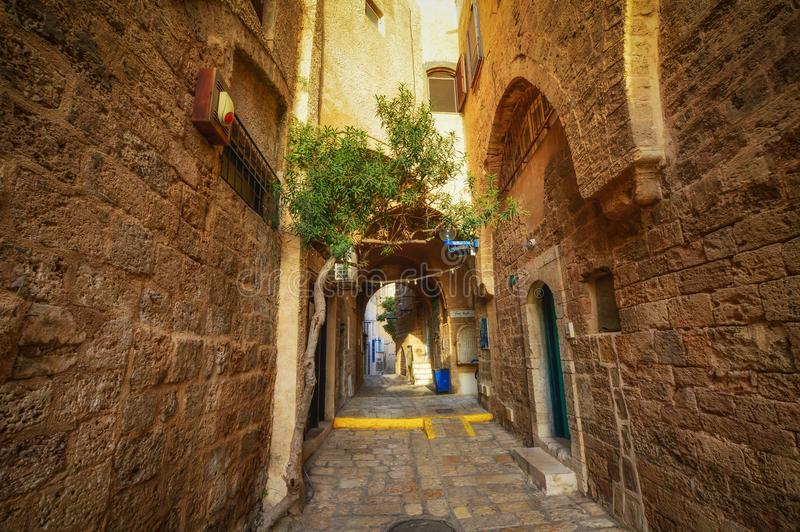 Tel Aviv, Israel, ancient stone streets in Arabic style in Old Jaffa. Ancient stone streets in Arabic style in Old Jaffa, Tel Aviv, Israel royalty free stock images