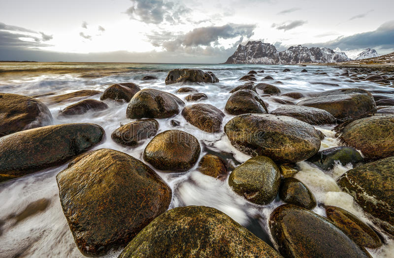 Ancient stones on the shores of cold Norwegian Sea at evening time. Lofoten islands. Beautiful Norway landscape. Ancient stones on the shores of cold Norwegian stock photography