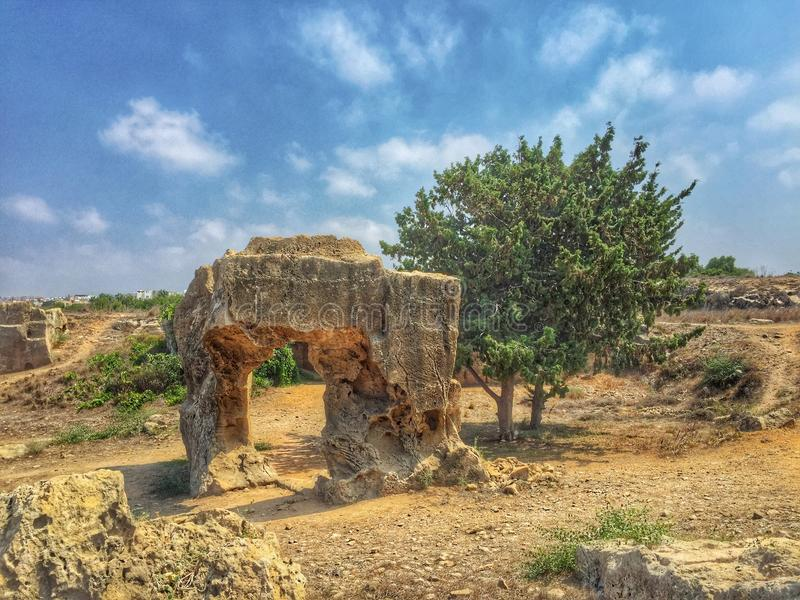 Ancient stones and tree. Ancient stones and a tree on Cyprus stock images