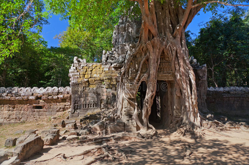 Ancient temple Preah Khan in Angkor complex. Siem Reap, Cambodia stock image