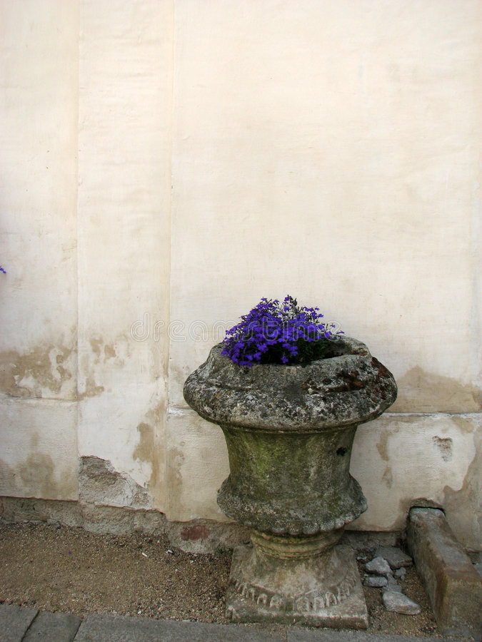Ancient vase with violet flowers. Ancient stone vase with violet flowers stock image
