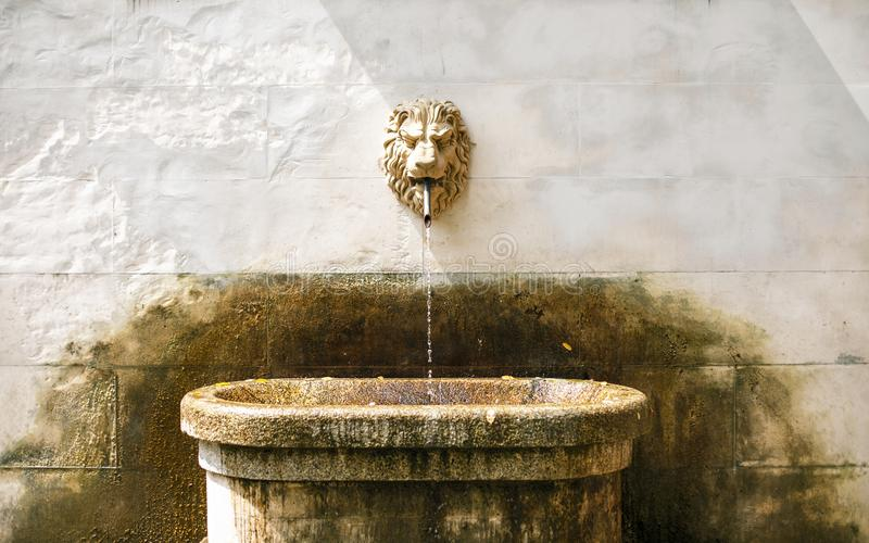 Ancient fountain with lion head. An ancient vintage exlusive fountain with a white lion head stock photos