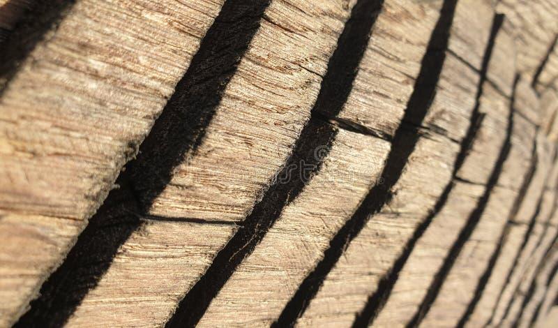 Ancient wood sculpture romania handcraft art stock photo