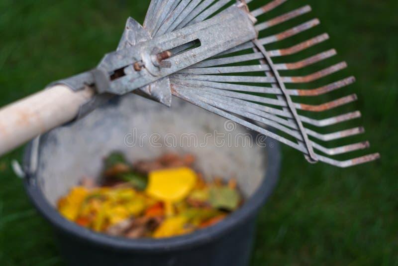 Ancinho e cubeta com folhas de outono imagens de stock royalty free