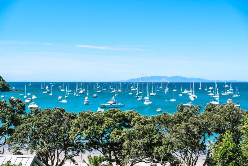 Ancladero apretado ocupado con muchos barcos en la bahía de la playa de Oneroa, Waih fotos de archivo libres de regalías