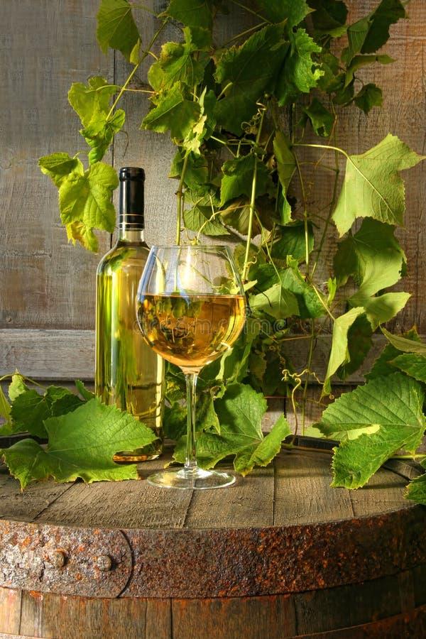 Ancora durata di vino bianco e della vigna immagine stock