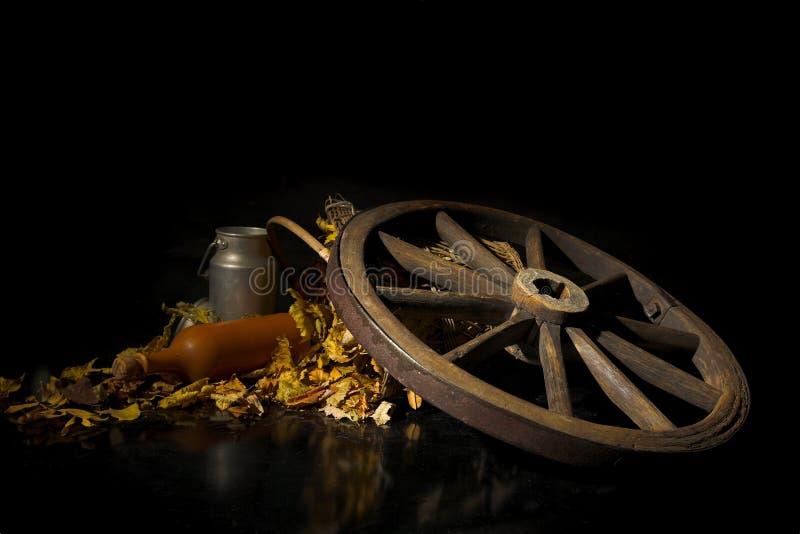 Download Ancora vita fotografia stock. Immagine di rotella, autunno - 3887018