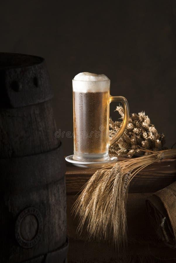 Ancora-vita con birra immagine stock libera da diritti