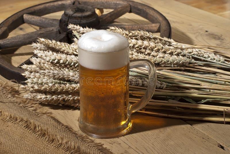 Ancora-vita con birra fotografie stock libere da diritti