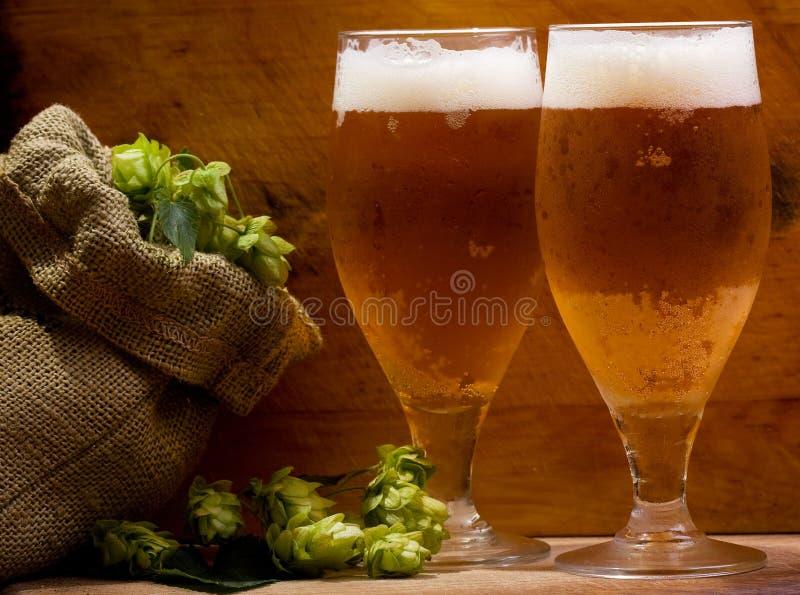 Ancora vita con i vetri di birra fotografia stock libera da diritti