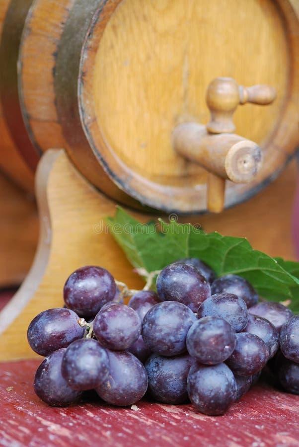 Ancora-vita del vino fotografia stock libera da diritti