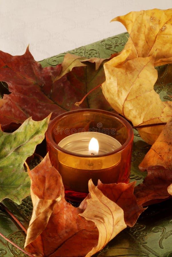 Ancora-vita di autunno fotografia stock