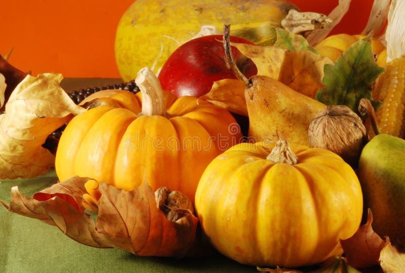 Ancora-vita di autunno fotografie stock