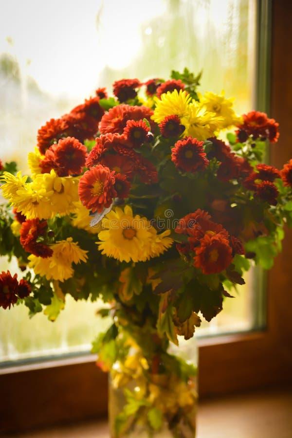 Ancora vita 1 Meravigliosamente mazzo dei chrysanthemyms immagini stock
