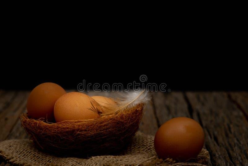 Ancora vita uova sul nido sistemato in una scena nera, concetto dell'alimento immagine stock