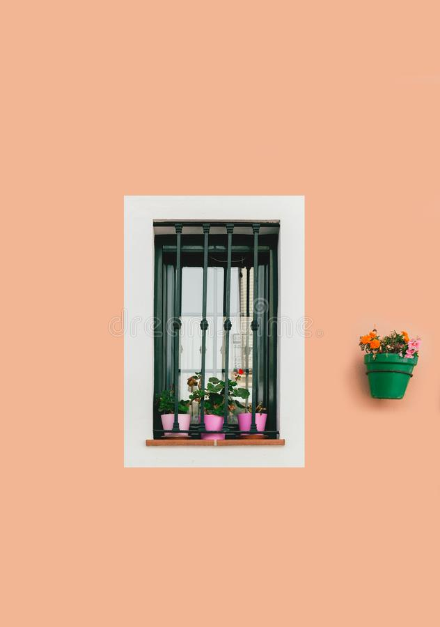 Andalucia. Rural design of house in Spain, Europe. window with steel bars. And white curtains inside. Blooming flower in pot above window stock photo